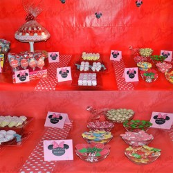 Theme table minie polka dots 40/60 diners