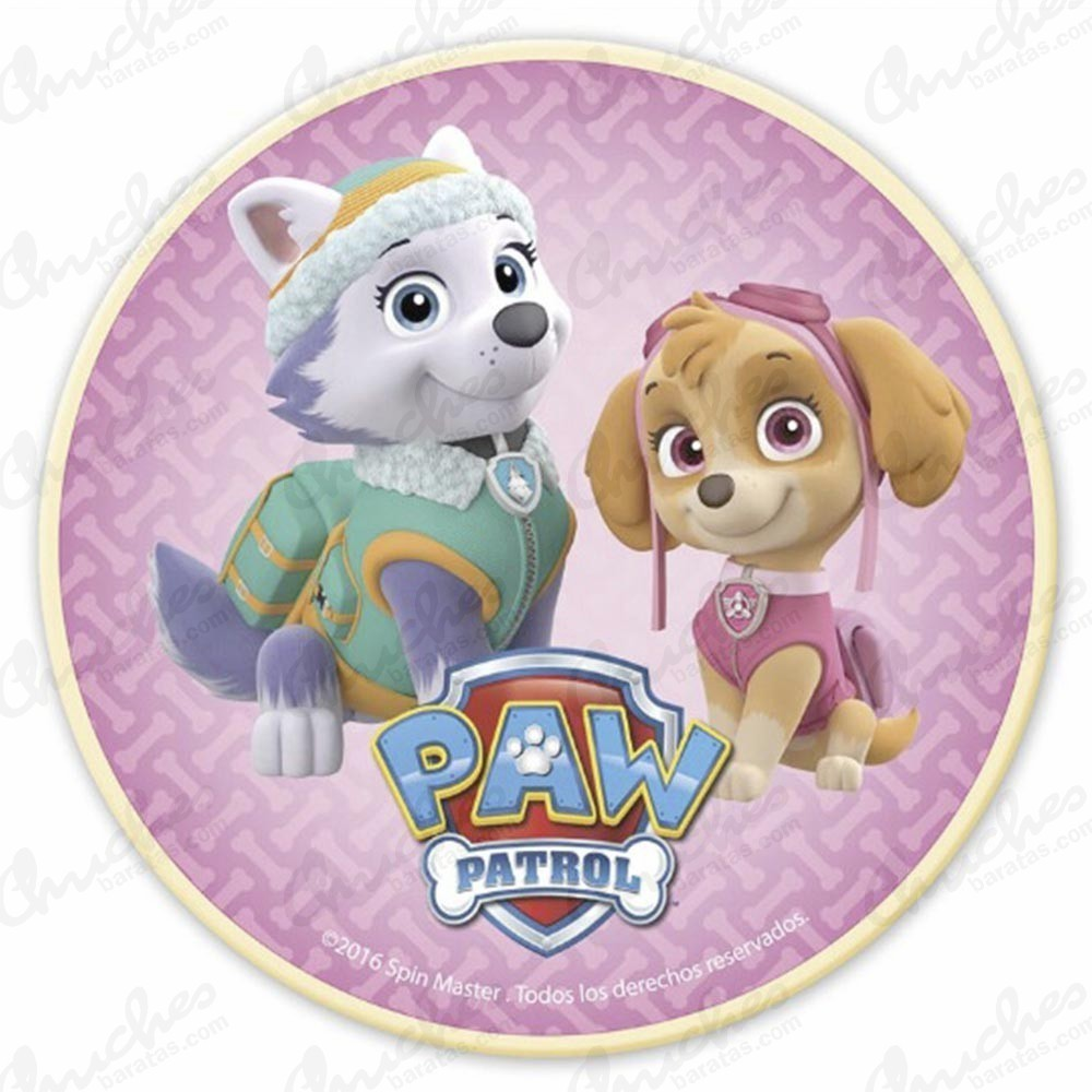Wafer Paw Patrol Girl Edible Wafers Cakes And Brochettes Chuches Baratas