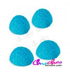 Moras azules 100 gramos