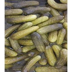 Pepinillo gordos  sabor anchoa