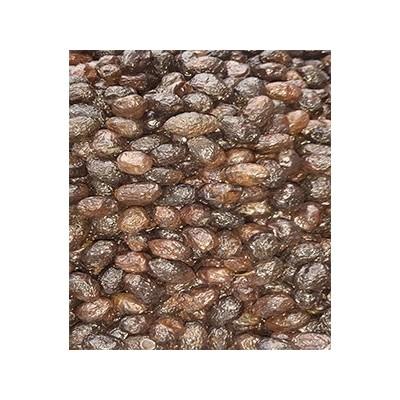 Aceituna de aragón seco